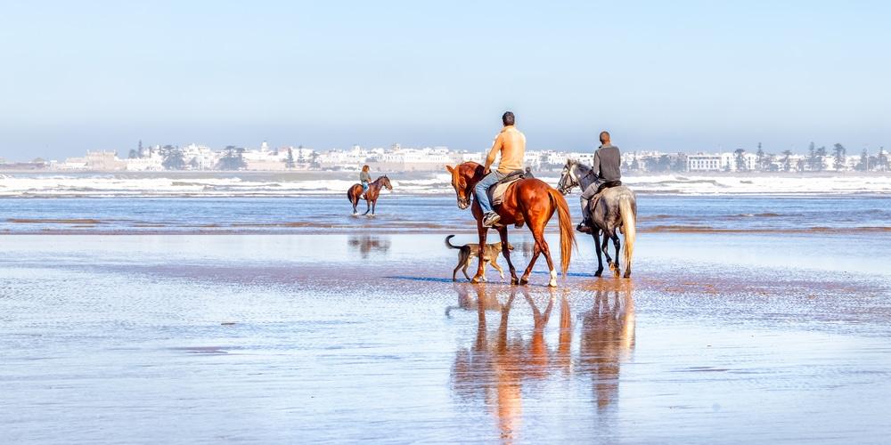Investir à Essaouira
